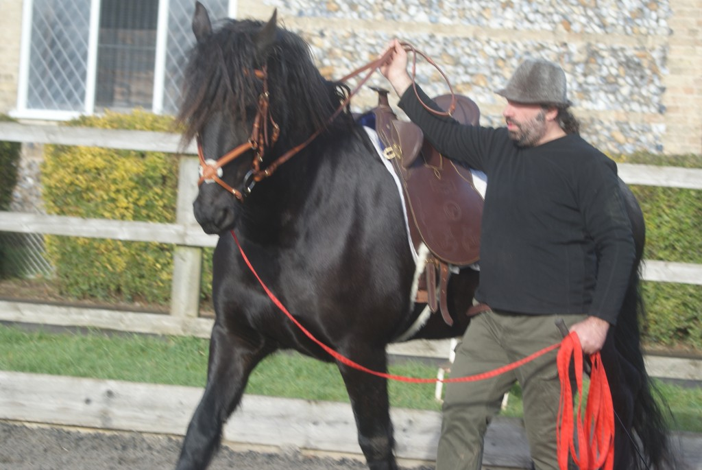 Kinesthetic empathy between horse and rider